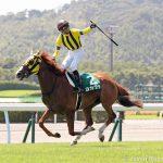 競争馬の熱中症対策