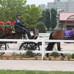 札幌競馬場、家族向け「ターフパーク」を用意